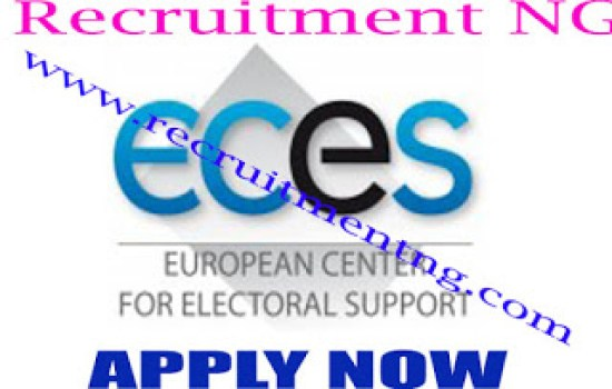 Project Accountant @ European Centre for Election Support