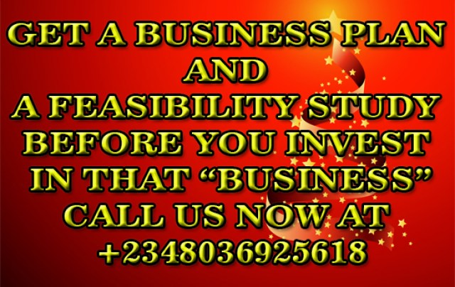 Auditing Your Business, Get A Business Plan And A Feasibility Study As A Bases