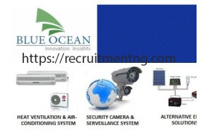 Information Research Scientist in Ocean Blue Energy