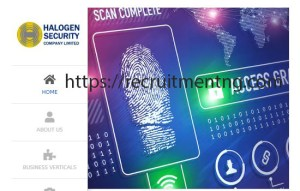 Executive Driver at Halogen Security Company Limited