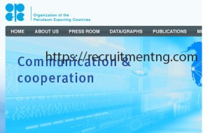 Energy Models Analyst at (OPEC)