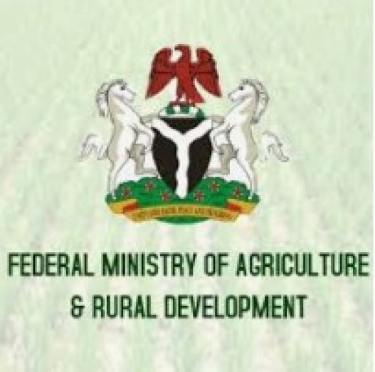 State Accountant Vacancy At Federal Ministry of Agriculture And Rural Development (FMARD)