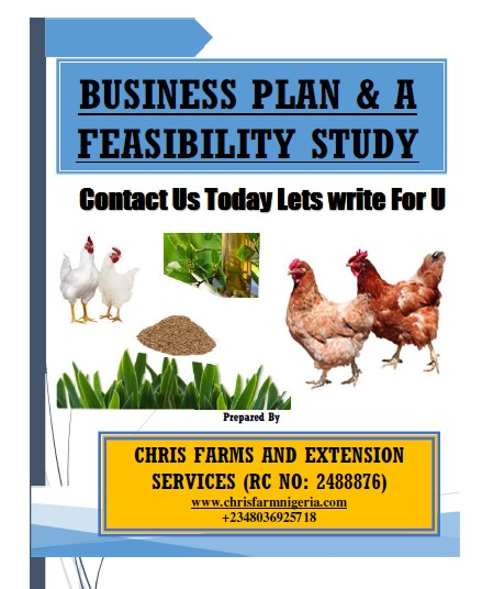 Loan/Grant Farming Business Plans and Feasibility Study Sample