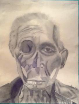 morph-drawing