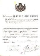 Licencia 11