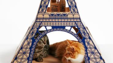 Torre Eiffel para gatos