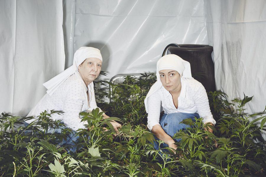 monjas-marihuana-4