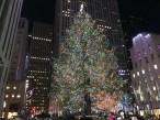 new_york_1167