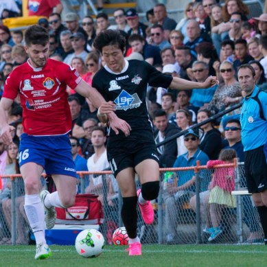 5 NSW NPL Stars WSW Could Sign
