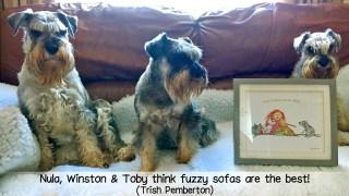 Nula, Winston & Toby