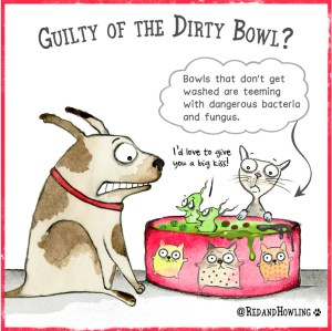 Guilty Of The Dirty Bowl?