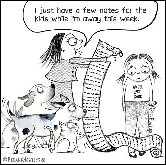 PetSitter.jpg