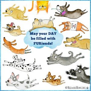 May your DAY be filled with FURiends!