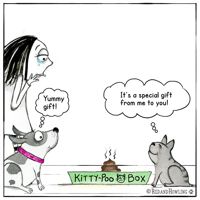 Kitty Poo