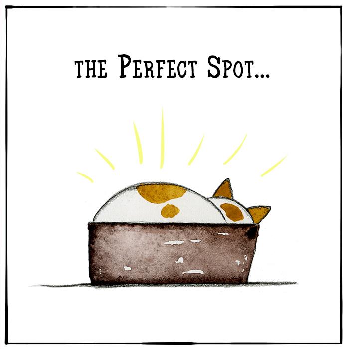 redandhowling_PerfectSpot01