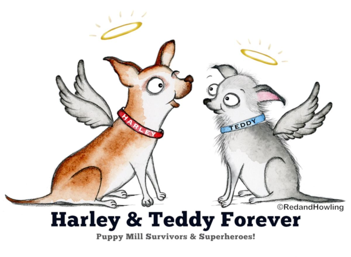 Puppy Mill Superheroes! – Red and Howling