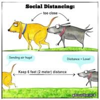 Social Distancing (GIF)