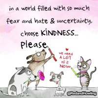 Choose Kindness (GIF)
