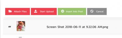 Screen Shot 2018 06 11 at 9.25.23 AM