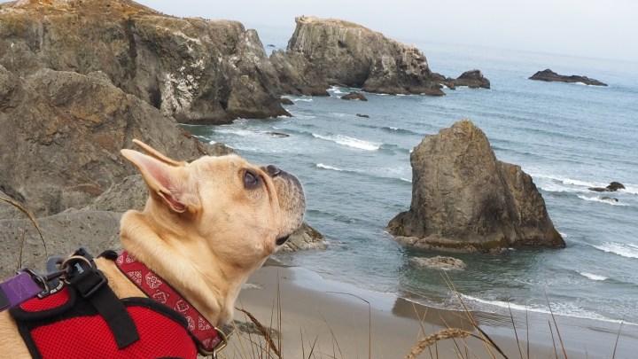 Boon-Docking the Oregon Coast