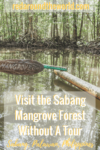 Visit the Sabang Mangrove Forest Without A Tour (1)