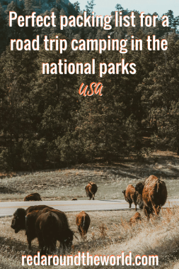 Are you planning a national park road trip around the USA? This is the perfect packing list for camping in the national parks on a road trip. It includes hiking gear, camping gear, clothes, tech, and a few other helpful things for the casual camper and hiker. #nationalparks #roadtrip #camping #packinglist #campingpackinglist #USA #hikingpackinglist #hiking #travel