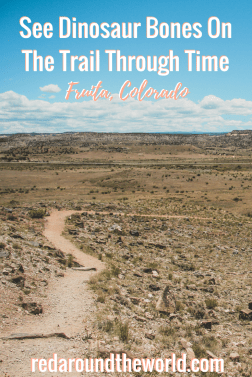 See Dinosaur Bones On The Trail Through Time. The Trail Through Time in Fruita, Colorado is an easy hike and a great place to see dinosaur bones in Colorado. If you're in Utah, it's an easy trip, too. #colorado #dinosaur #usa #roadtrip #travel #history #hiking #hike