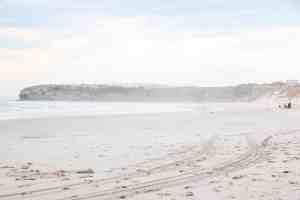 tomahawk beach dunedin new zealand