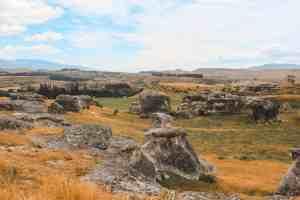 elephant rocks new zealand