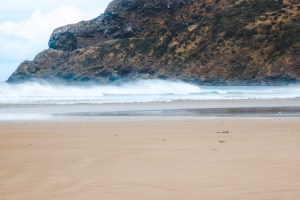 beach on the south island in new zealand