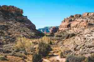 Mill Canyon dinosaur trail