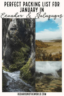 Want to know what to pack for Ecuador in January? Look no further! This is the perfect packing list for Ecuador and the Galapagos Islands. Galapagos packing   Galapagos packing list   Ecuador packing   Ecuador packing list   Ecuador travel Ecuador things to do   Ecuador vacation   Ecuador in January   galapagos travel   galapagos vacation #galapagos #ecuador #packinglist