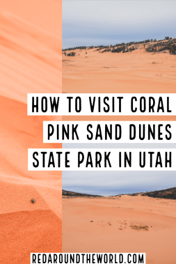 Stop by Coral Pink Sand Dunes State Park near Kanab, Utah on your next road trip in Southern Utah and climb the red dunes for an afternoon of fun. Utah state parks | utah hiking | utah road trip | Utah things to do | Utah vacation | utah travel | US state parks | sand dunes in the US | Utah national park road trip | hiking in utah