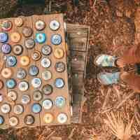 Myakka State Park: A Geocaching Paradise In Florida