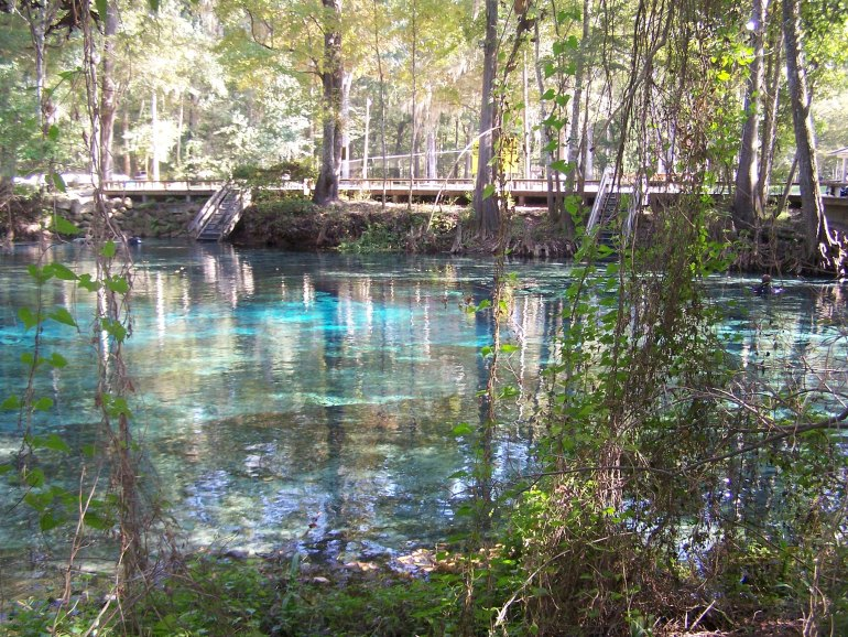 Ginnie Springs Via Paul Clark Flickr