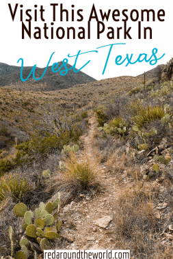 Half a day in Guadalupe Mountains National Park in Texas is a great way to experience this underrated park in a short amount of time. west texas road trip | texas road trip | underrated national parks | texas national parks | Guadalupe mountains national park | texas things to do | texas hiking | texas vacation