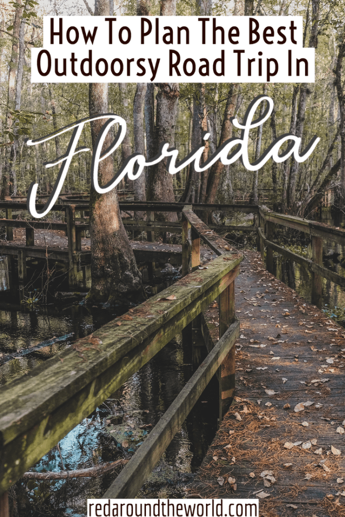 This is the best guide to help you plan an outdoorsy Florida road trip to the national parks, state parks, springs, and more. It will be the best Florida trip. Florida travel | Florida vacation | Florida things to do | Florida road trip | Florida national parks | Florida hikes |Florida state parks | South Florida road trip | North Florida road trip
