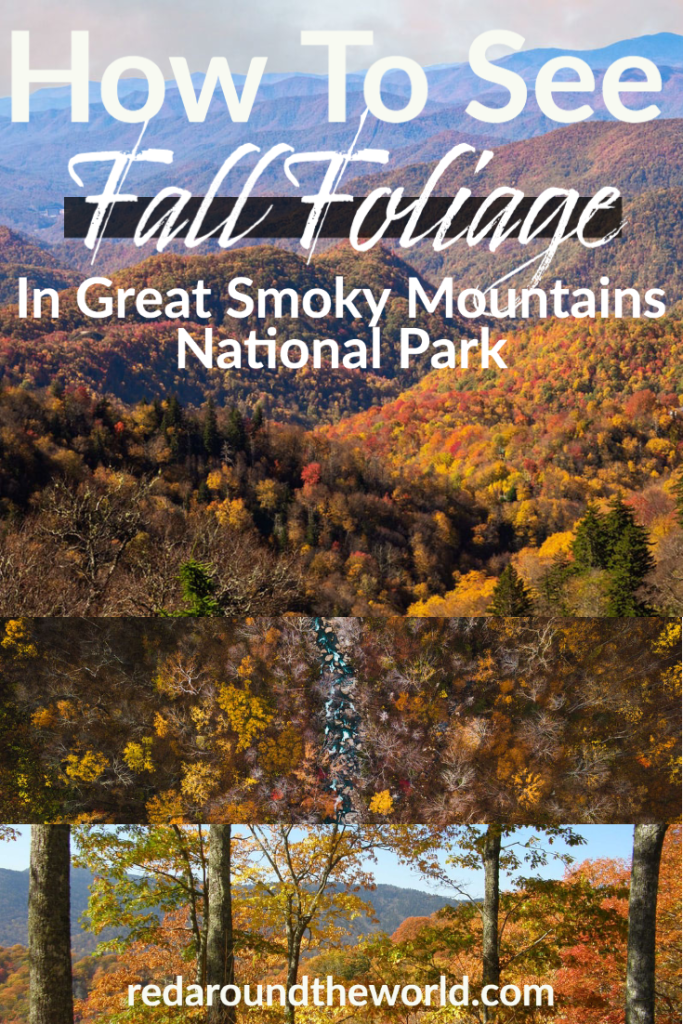 Gatlinburg in fall is a must-do. Great Smoky Mountains National Park in fall is one of the best places to see leaves change in the country and this guide will help you plan your trip. Smoky mountains | smoky mountain national park | smoky mountains Tennessee | smoky mountains vacation | smoky mountains travel | smoky mountains fall | smoky mountains things to do | gatlinburg Tennessee | gatlinburg fall | gatlinburg things to do | great smoky mountains fall | great smoky mountains national park fall