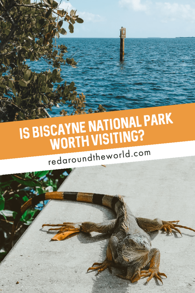 Is it worth the trip out to Biscayne National Park from Miami? Definitely! There are so many reasons to visit Biscayne National Park and awesome things to do there. biscayne national park worth it | Biscayne Florida | Biscayne national park Florida | Florida national parks | Biscayne national park | Florida road trip | Florida things to do | Florida vacation | Florida travel | Florida travel ideas