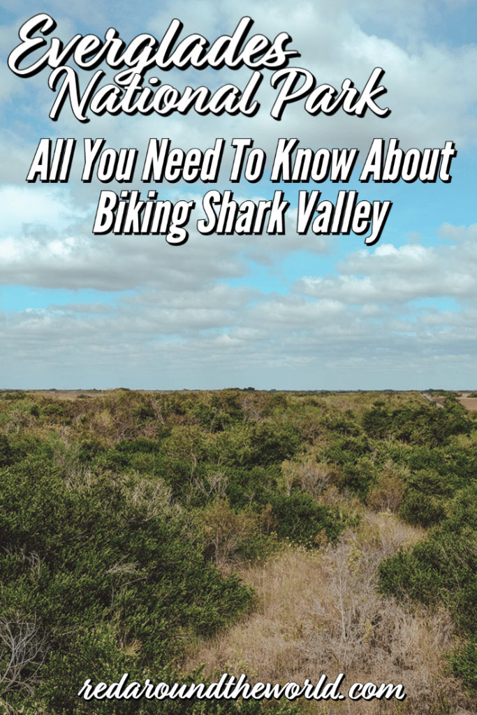 Biking Shark Valley in Everglades National Park is a must-do.  It's a longer but easy bike ride with great wildlife sighting opportunities. Everglades national park things to do | everglades florida | everglades thing to do | everglades shark valley | shark valley everglades national park | everglades vacation | biking shark valley | florida vacation | florida things to do | florida road trip   florida national parks