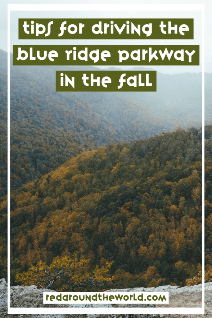 Driving the Blue Ridge Parkway in the fall is a bucket list topping activity. It's one of the best and most iconic road trips in the USA. blue ridge parkway fall | blue ridge parkway viriginia | blue ridge parkway north carolina | blue ridge parkway road trip | blue ridge parkway | usa road trips | usa scenic drives