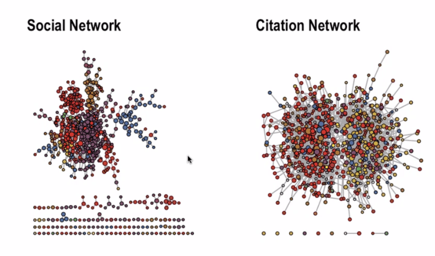 Social network and citation network in the COVID-19 Peer Hub