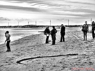 Clean Ocean Action Beach Sweeps 1 of 64