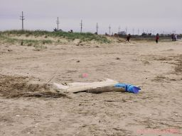 Clean Ocean Action Beach Sweeps 2 16 of 20