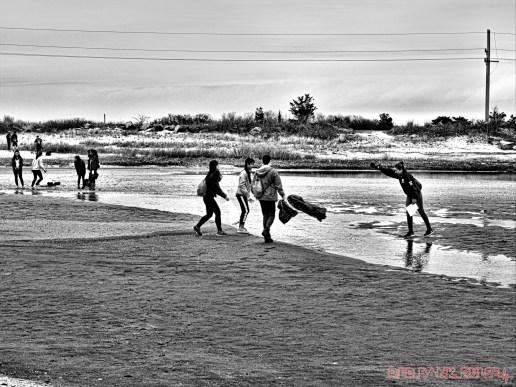 Clean Ocean Action Beach Sweeps 2 of 64