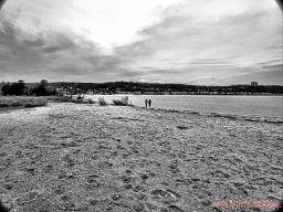 Clean Ocean Action Beach Sweeps 57 of 64
