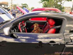 Bob DOC Holiday Memorial Car Show 2017 14 of 83