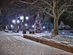 Red Bank Holiday Lights Night Snow 13 of 17