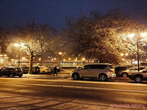 Red Bank Snow Snowfall Holiday Lights 2 of 8