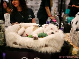 Super Pet Expo April 2018 108 of 117
